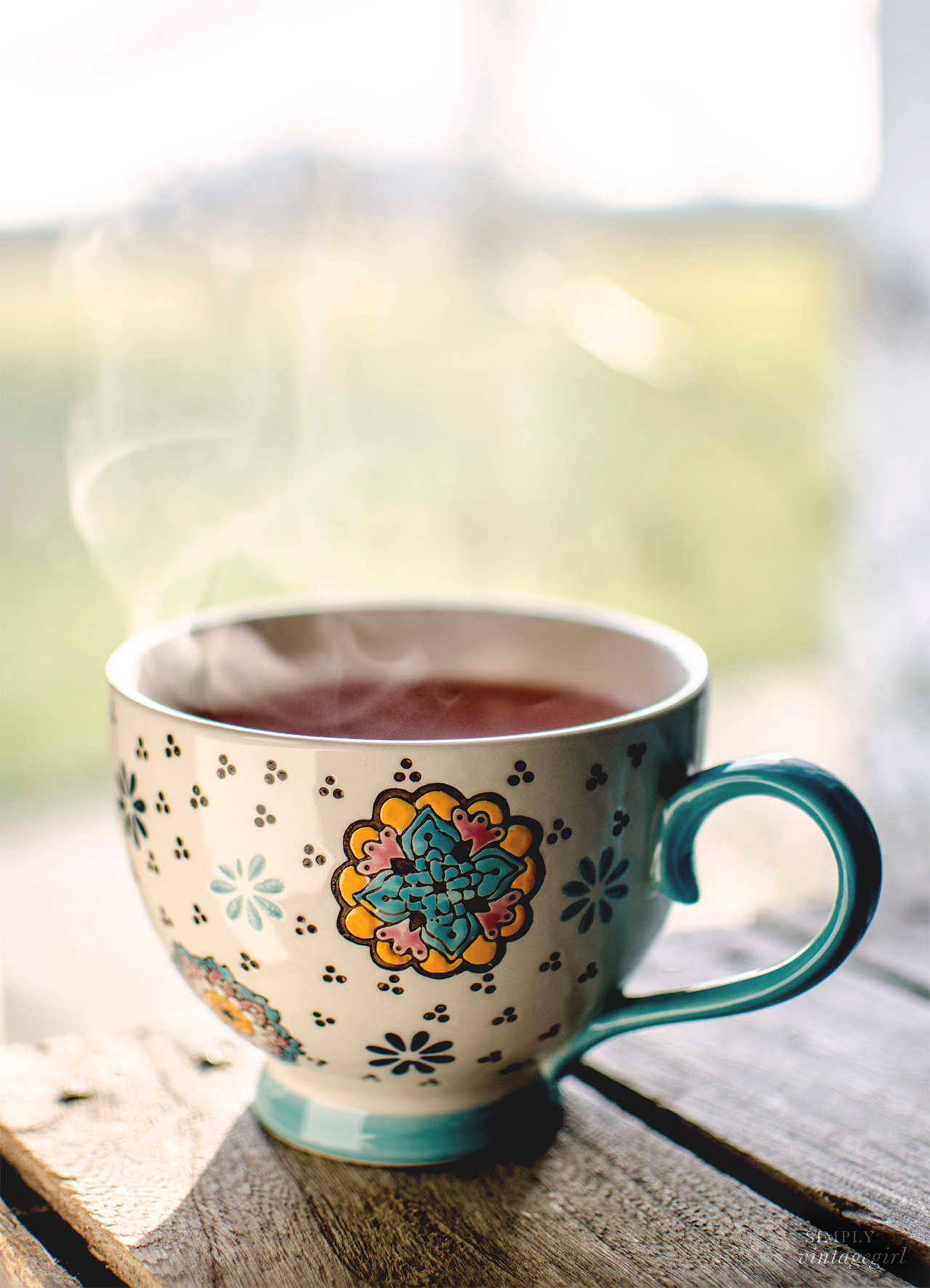Steaming Mug of Cranberry Wassail